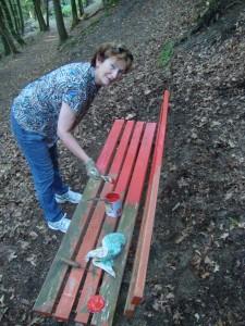 Foto: Anne Hilgert saniert eine der letzten roten Bänke im Stadtwald
